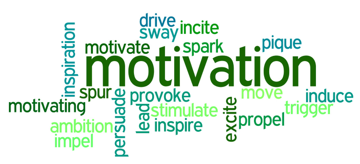 motivation and reinforcement on performance essay
